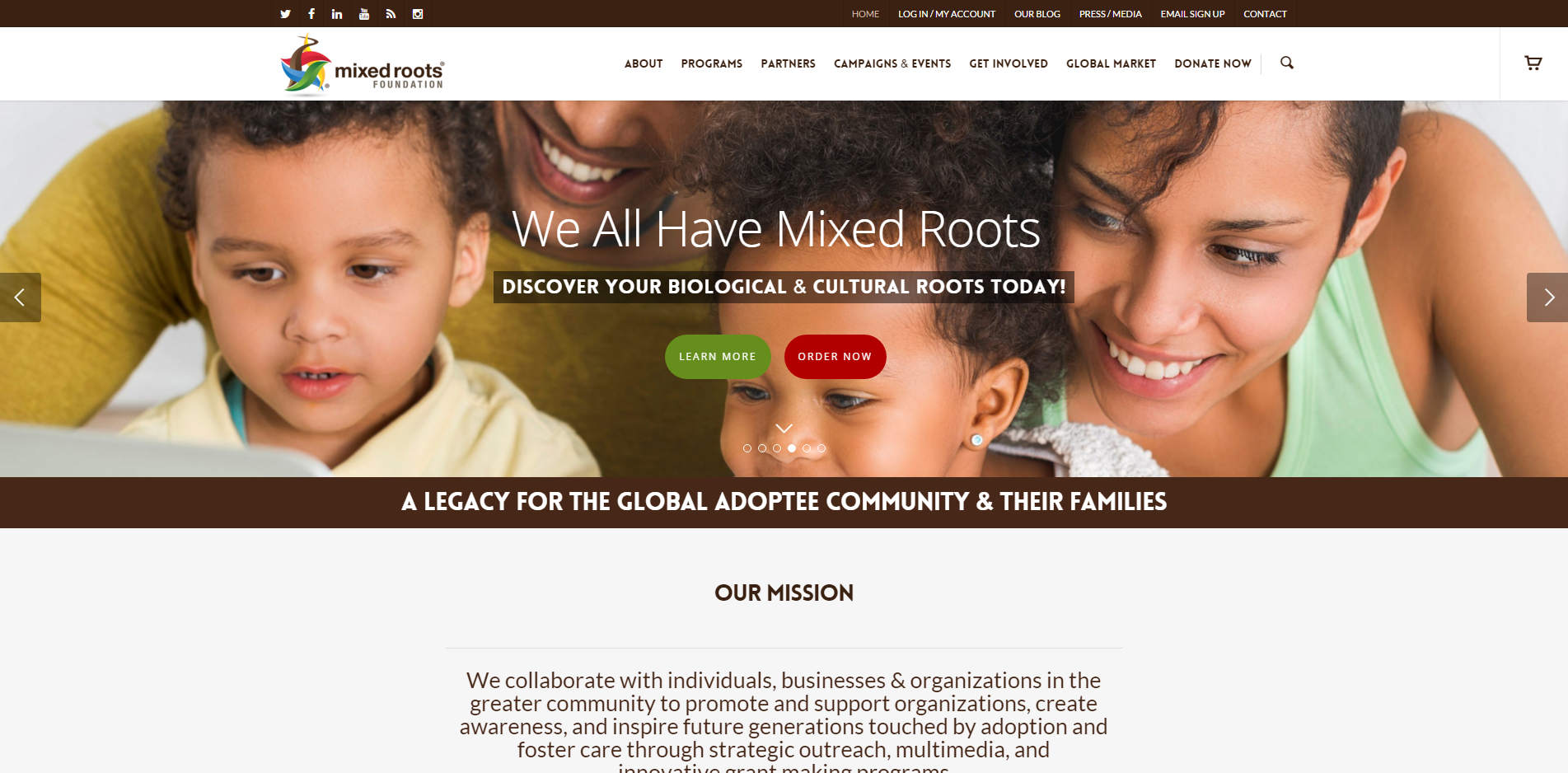 Mixed Roots Foundation Home Page